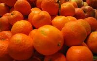 За Новый год украинцы скупают 60% годового потребления мандарин