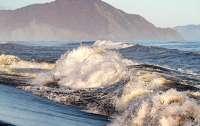 Появились первые результаты исследования загрязненной воды на Камчатке