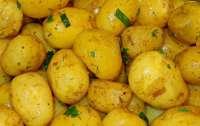 Врачи рассказали, кому запрещено есть молодой картофель