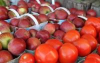 Яблоки и помидоры могут вылечить легкие курильщиков
