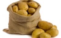 Картошка в Украине, оказывается, привозная