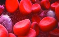 Сегодня Всемирный день борьбы с гемофилией
