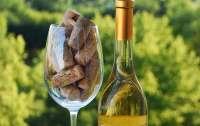 Культура употребления белых вин — секреты опытных сомелье