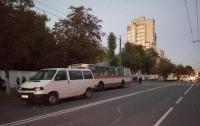 В Житомире микроавтобус сбил детей на пешеходном переходе