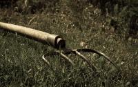 На Тернопольщине студентку забили вилами до смерти на почве ревности