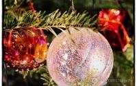 В Украине назначили дополнительные поезда на новогодние праздники (расписание)