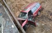 Пьяный водитель сильно пострадал, но выжил (фото)