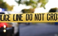 Стрельба в Техасе, более 20 погибших