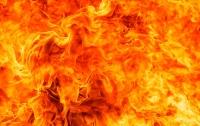 В Ивано-Франковске на ходу загорелся автомобиль (видео)