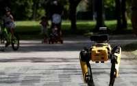 В Сингапуре соблюдение дистанции в парке контролирует робот (видео)