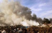 На Житомирщине сильный пожар