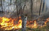 Жители Закарпатья находятся в опасности из-за погоды