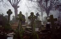 Москвичи смогут пользоваться на кладбищах бесплатным Wi-Fi