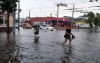 В Житомире пронеслось разрушительное стихийное бедствие
