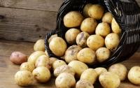 Один из самых популярных в Украине продуктов дорожает