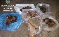 Ривненщина: в автомобиле нашли пять пакетов с ценным янтарем