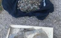 В Украине откопали невероятный клад