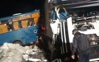 Два ДТП с участием маршруток произошли в Киевской области