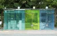 В Токио появились общественные туалеты из стекла (ВИДЕО)