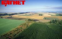 МХП скупает агрокомпании