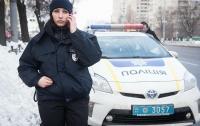 В Запорожье обнаружили несколько тонн человеческих останков (видео)