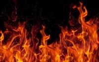 Пожар на обувной фабрике в России: погибли 10 китайцев