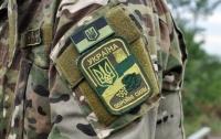 Показали новую символику украинских бойцов (фото)