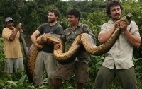 В Гайане биолог-авантюрист нашел огромную анаконду (ФОТО)