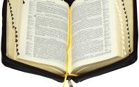 Нардепы будут читать библии вместо законопроектов