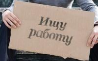 В Донецкой области - 8 безработных на 1 место