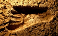 Археологи нашли следы человека возрастом 5,7 млн лет