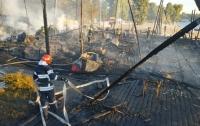 В киевском Гидропарке сгорел пляжный комплекс (видео)