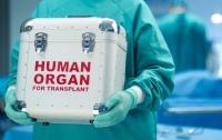 Медики отказываются оперировать: побочные эффекты закона о трансплантации