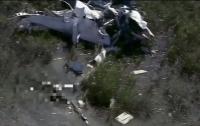 Крокодил съел пилота самолета, что потерпел катастрофу