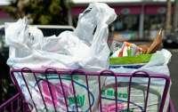 Ученые нашли способ переработки любого вида пластика