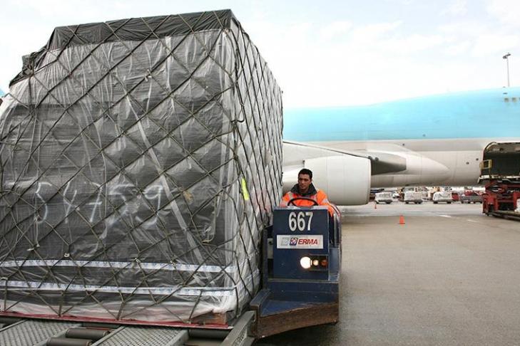 Ваэропорту Рио-де-Жанейро отыскали 100 килограмм героина и50кг взрывчатки