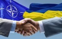 В Киев приедут специалисты НАТО для реформирования военного образования