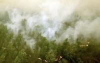Индонезия в дыму