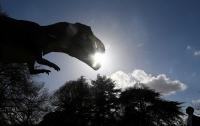 Найдены следы динозавра возрастом 100 млн лет