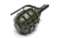Психически больной житель Одесщины бросил гранату в полицейских