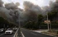 Лесной пожар в Греции забрала жизни уже 81 человека