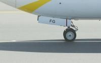 В Индии при посадке у пассажирского лайнера лопнуло колесо