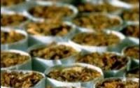Теневой сектор табачного рынка Украины растет, - эксперт