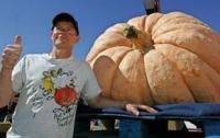 В Японии фермер вырастил гигантскую тыкву