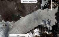 Самый большой ледник отколося от Гренландии