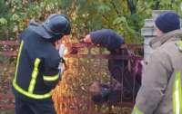 Под Одессой забор чуть не убил мужчину