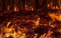 Российский пожар перебросился на Крым?