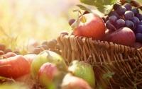 Оградит от болезней: популярная в Украине ягода признана целебной