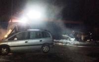 На автостоянке в Житомире сгорели четыре машины