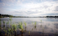 Из киевского озера достали тело несовершеннолетнего